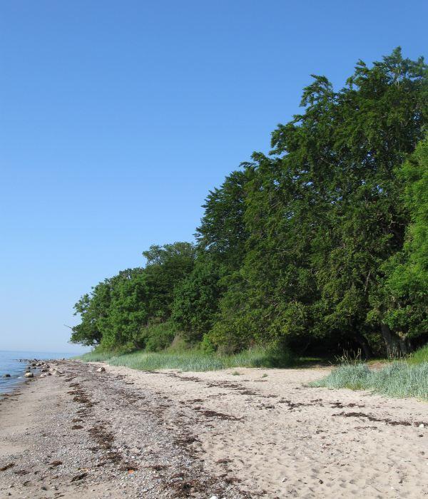 Øhavsstien - Stengade Strand
