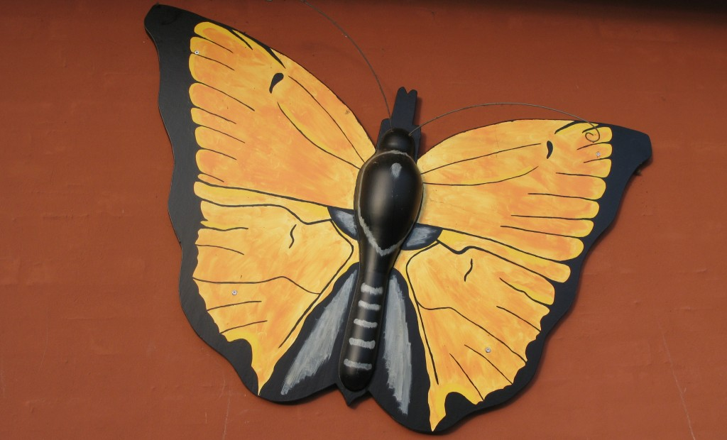 sommerfugl_husmur_rudkoebing
